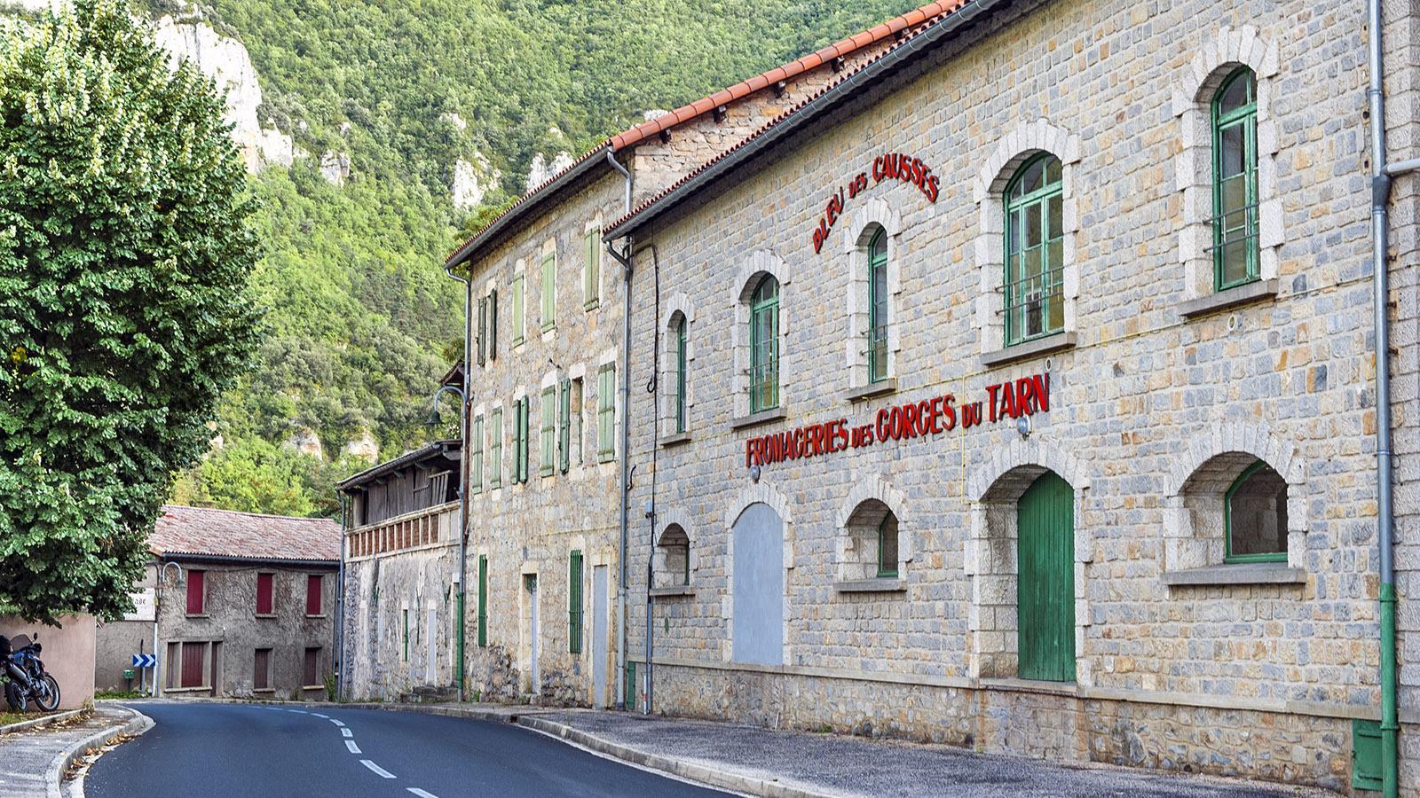 Gorges du Tarn: Cave de Peyrelade. Foto: Hilke Maunder
