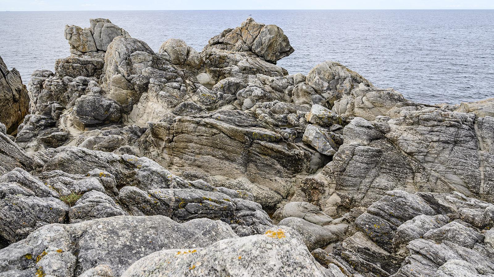 Der schlafende Felsenbär der wilden Küste von Le Croisic. Foto: Hilke Maunder