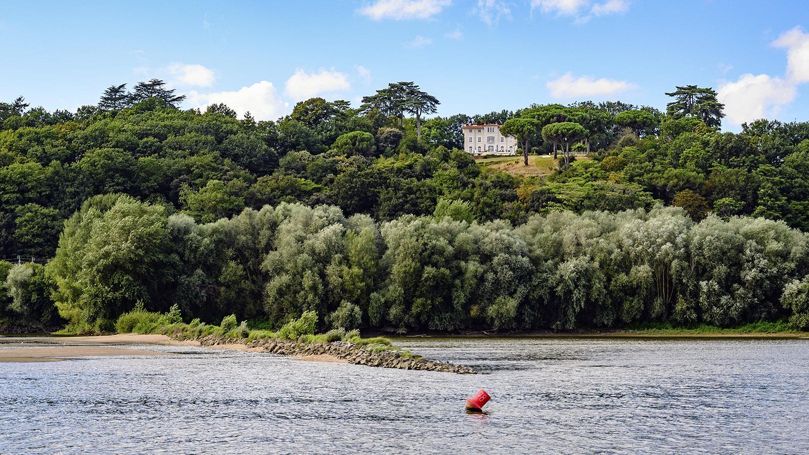 An der Loire zwischen Ancenis und Nantes. Foto:
