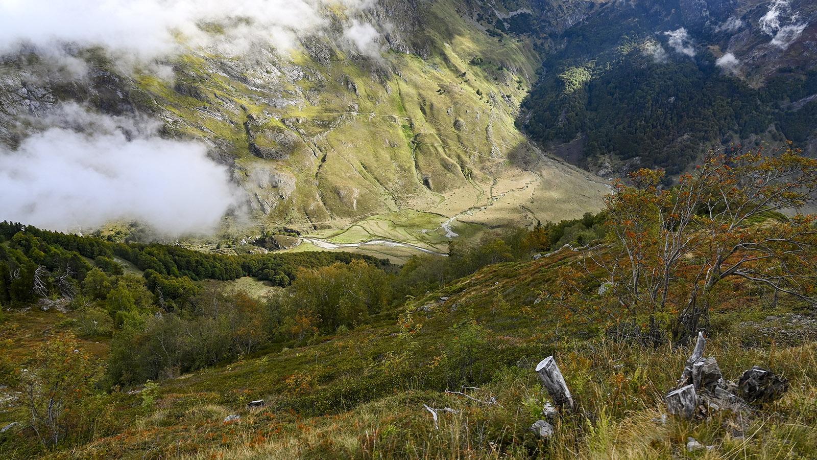 Landschaft bei Le Petit Train d'Artouste. Foto: Hilke Maunder