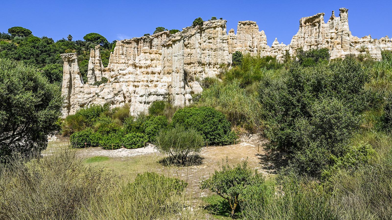 Les Orgues von Ille-sur-Têt: Die Erosion frisst sich sichtbar in die Felskanten. Foto: Hilke Maunder