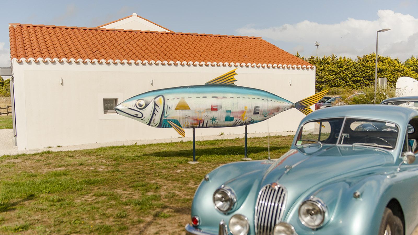 Auch vor dem Atelier de la Sardine ist der blaue Fisch der HIngucker. Foto: Hilke Maunder