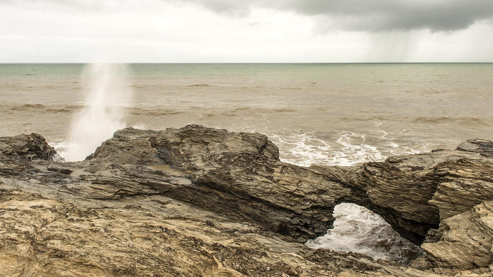 Sardine. Le Trou du Diable an der Corniche Vendéenne. Foto: Hilke Maunder