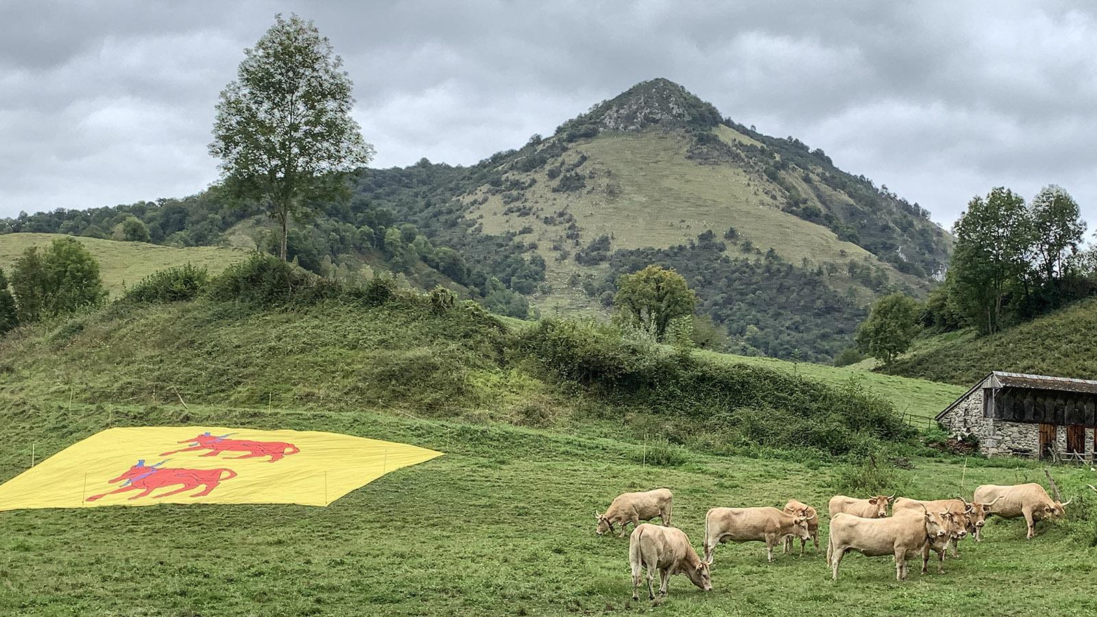 Tour de France im Zeichen des Béarn. Foto: Hilke Maunder