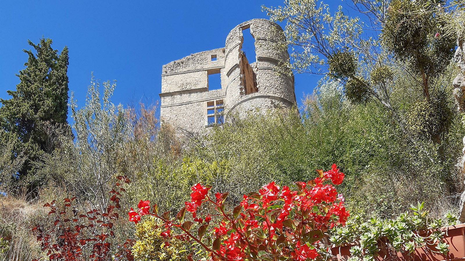 Die Schlossruine von Montbrun-les-Bains. Foto: Katharina Kehmer