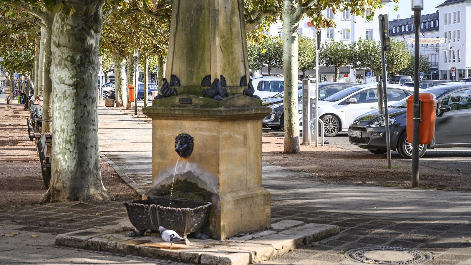 Saarlouis: Der Marktbrunnen der Nordecke. Foto: Hilke Maunder