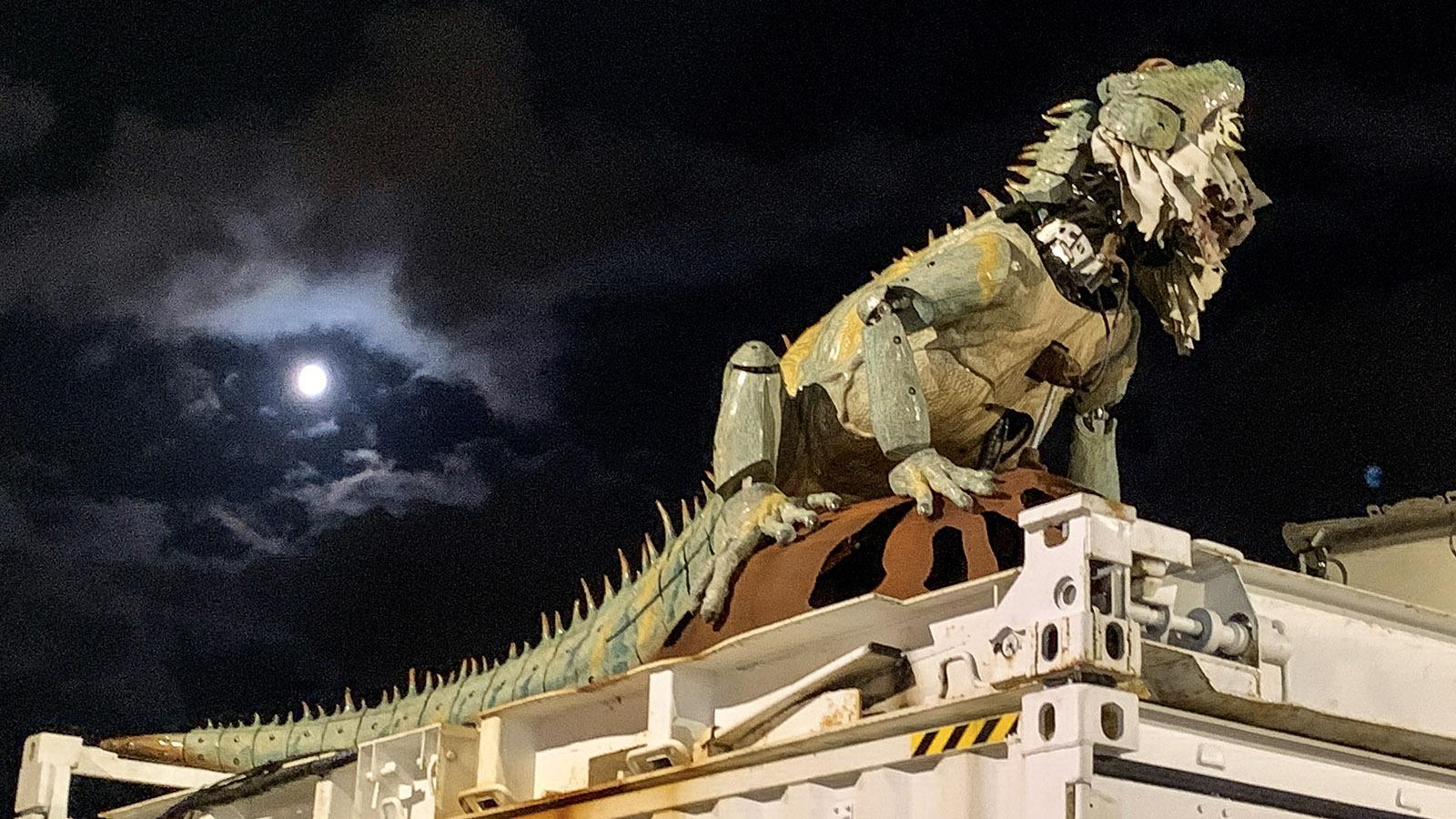 Calais: mechanische Echse der Dragon du Calais. Foto: Hilke Maunder