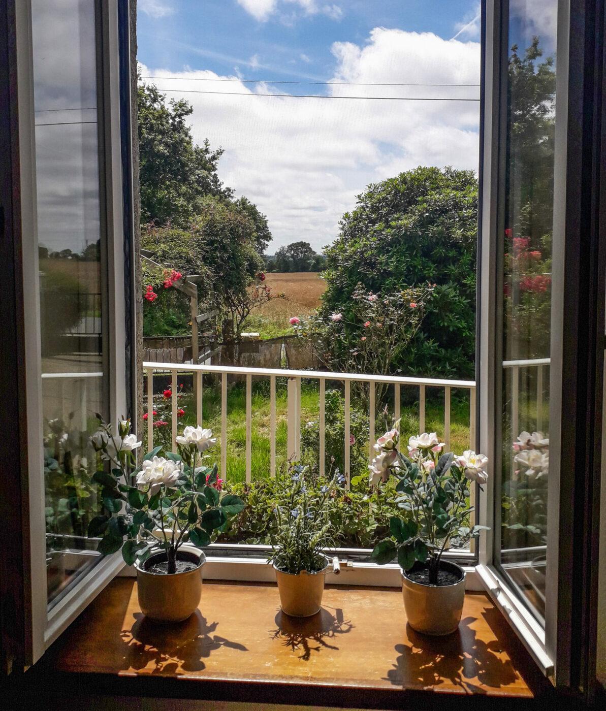 Der Lieblingsblick aus dem Wohnzimmer. Foto: Silvia Wiggers