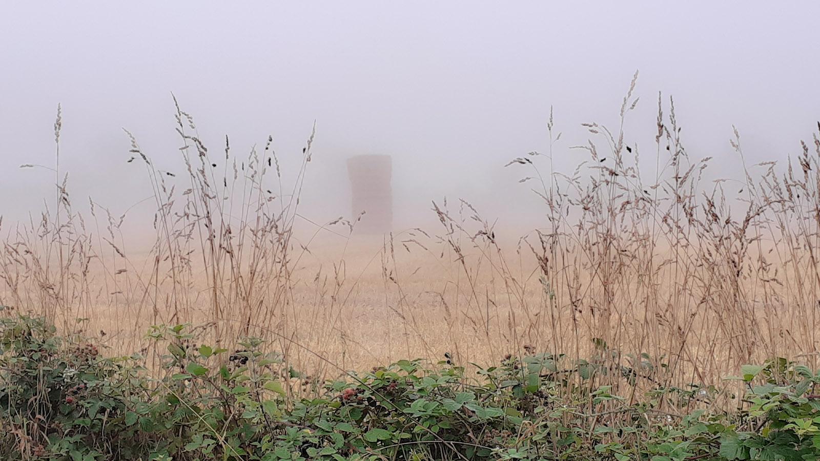 Mystische Erscheinung im Nebel. Foto: Silvia Wigger