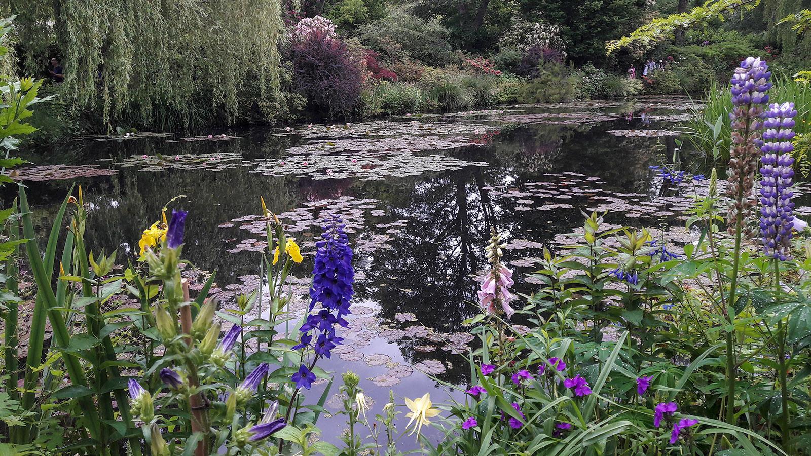 Der Garten von Monet in Giverny. Foto: Ulrike Siepmann-Kolley
