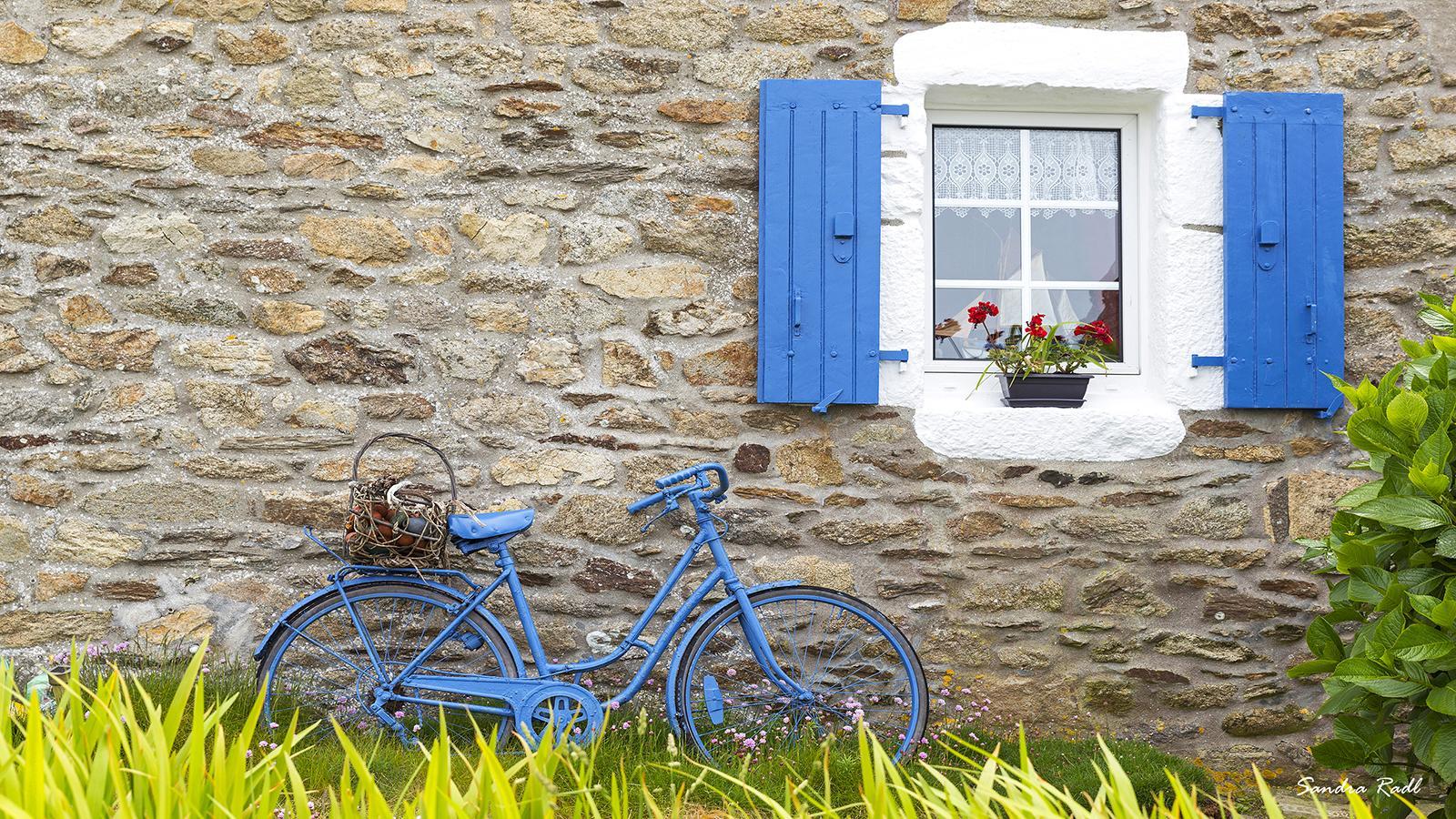 Ouessant-Farben: blau und weiß. Foto: Sandra Radl