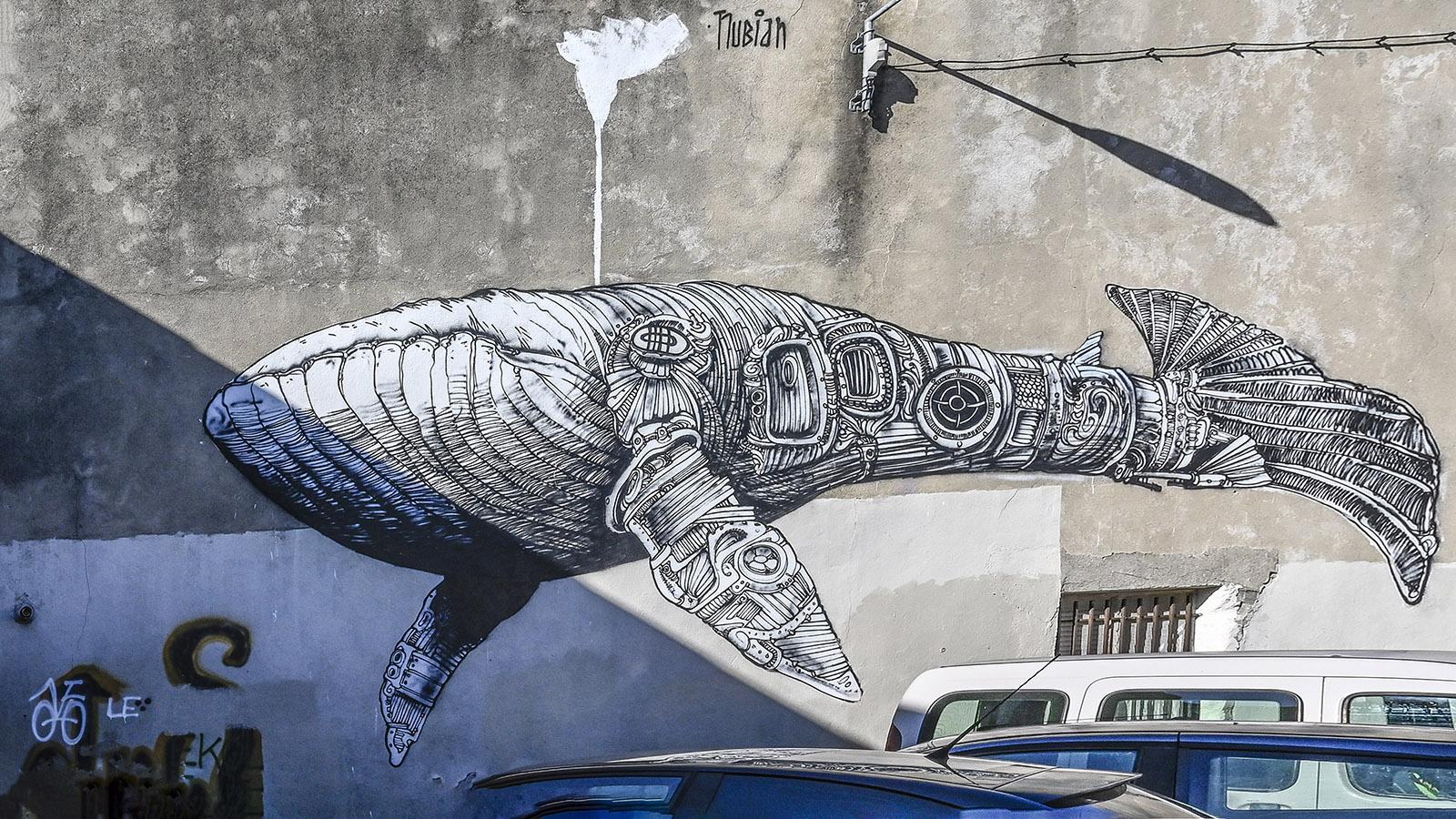 Street Art Nimes, Quartier Richelieu: der Wal von Nubian. Foto: Hilke Maunder