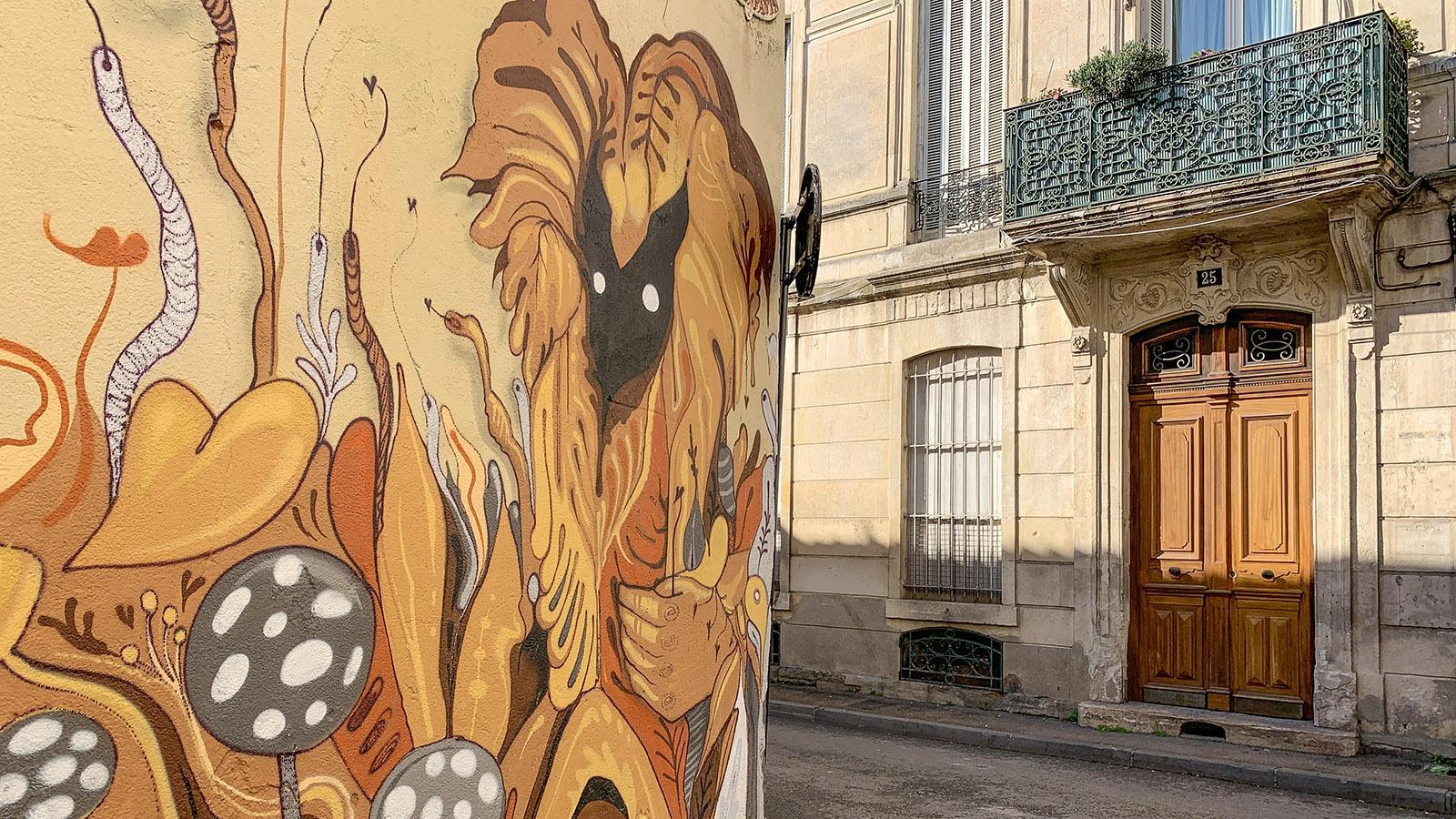 Street Art Nîmes, Richelieu,: Blumen, Nohbi. Foto: Hilke Maunder
