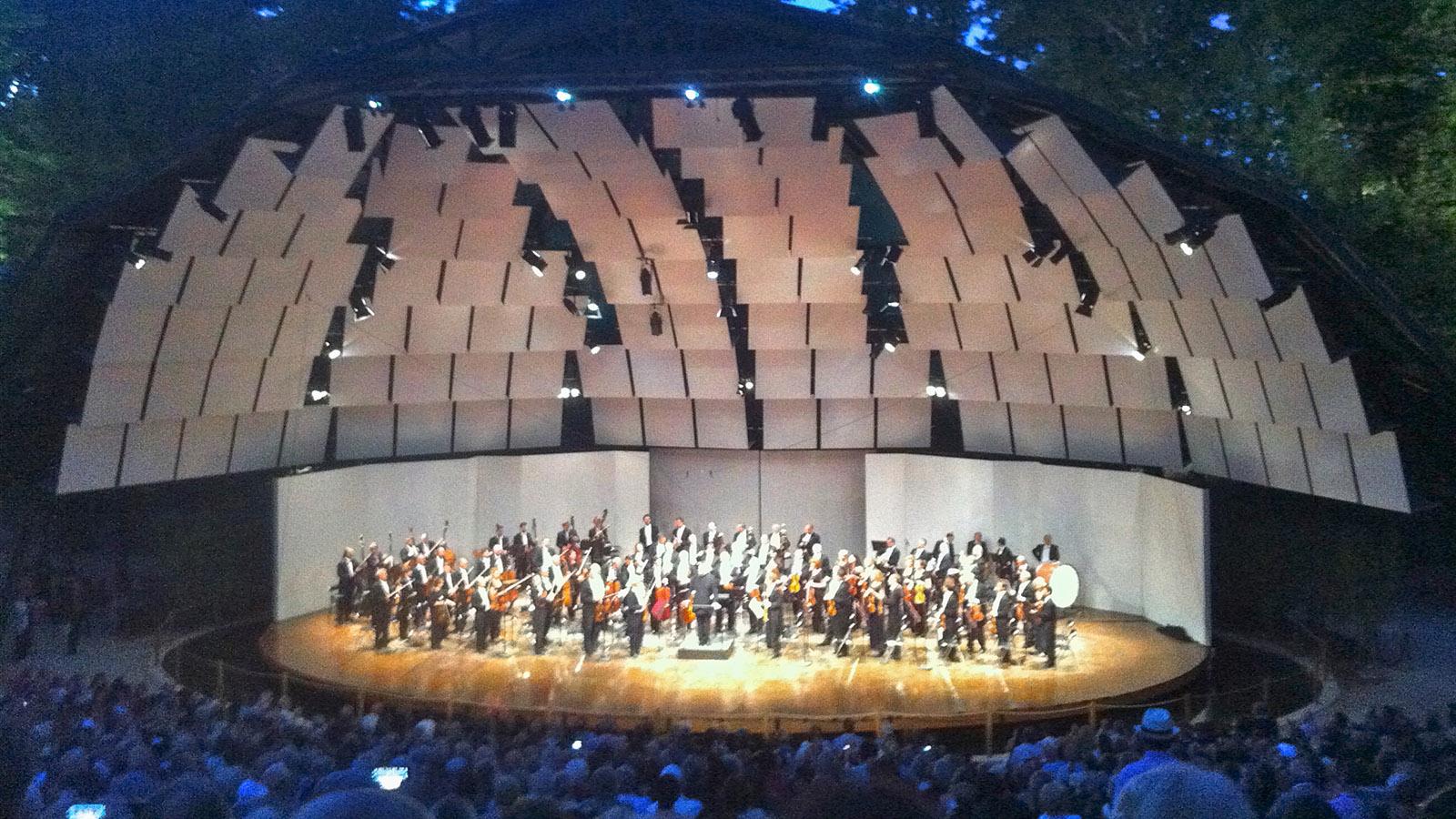 Konzert mit Zikaden. Foto: Uli Luipold