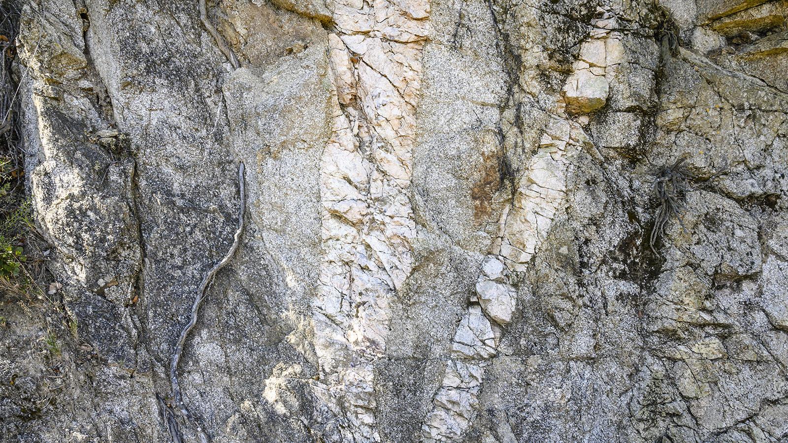 Marmoreinschlüsse im Fels. Foto: Hilke Maunder
