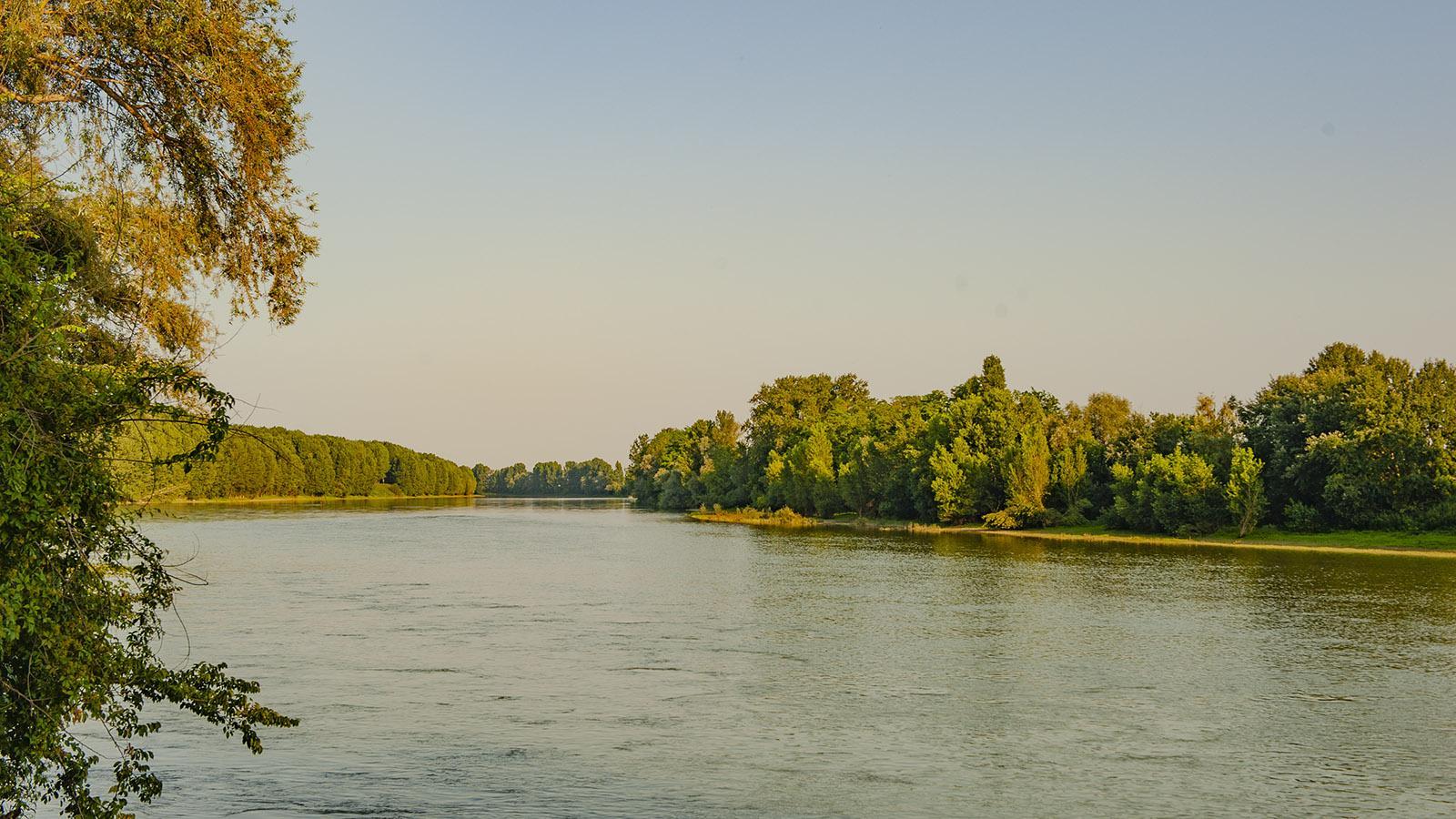 Die Garonne bei Bourdelles. Foto: Hilke Maunder