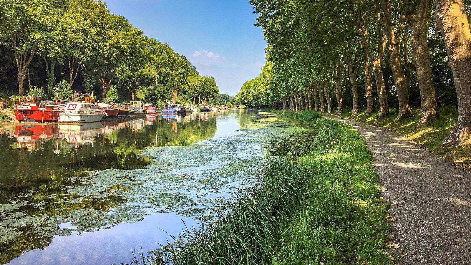 Radwege säumen den Garonne-Seitenkanal. Foto: Hilke Maunder