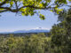 Sentiers des Hauts de Taichac: Blick auf den Canigou. Foto: Hilke Maunder