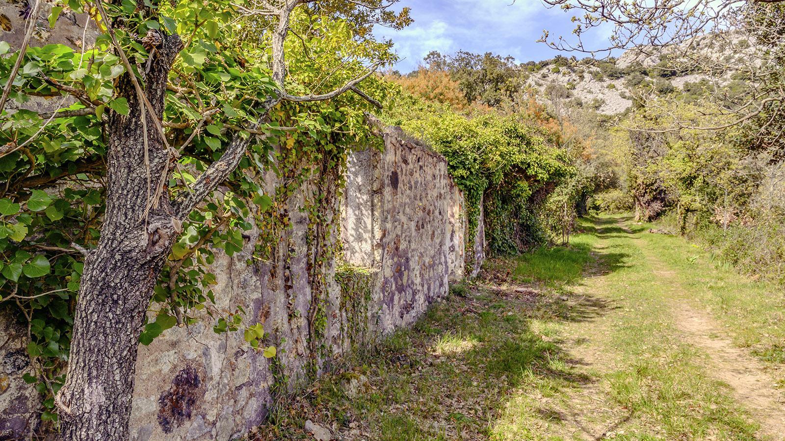 Die Bergsmannsruinen am Sentier des MInes. Foto: Hilke Maunder