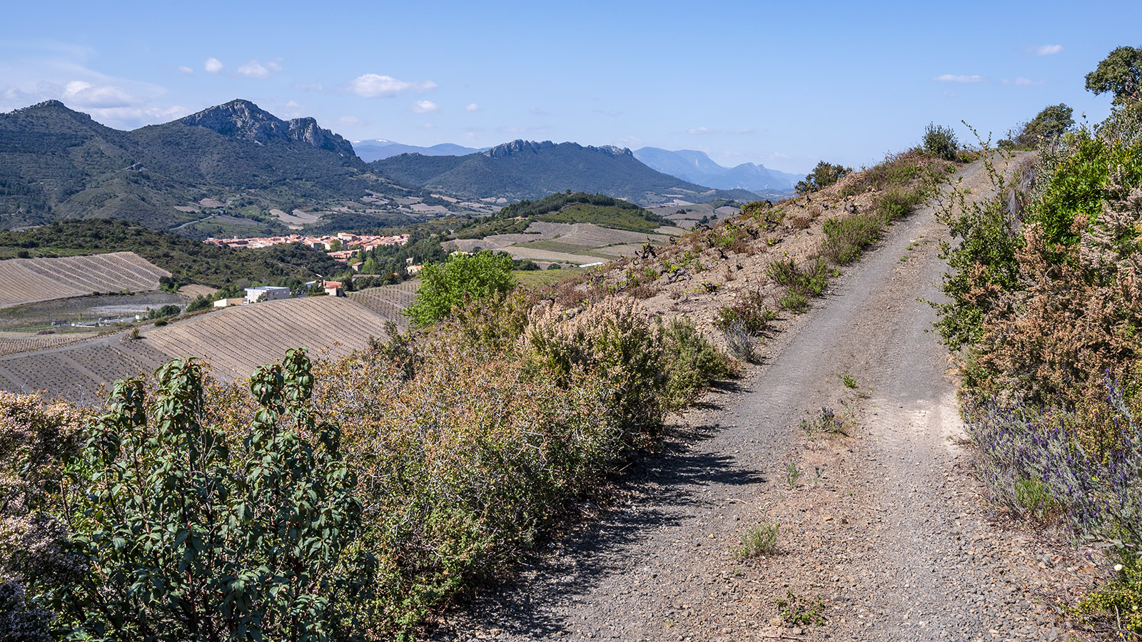 Maury vom Chemin des Amorioles aus. Foto: Hilke Maunder
