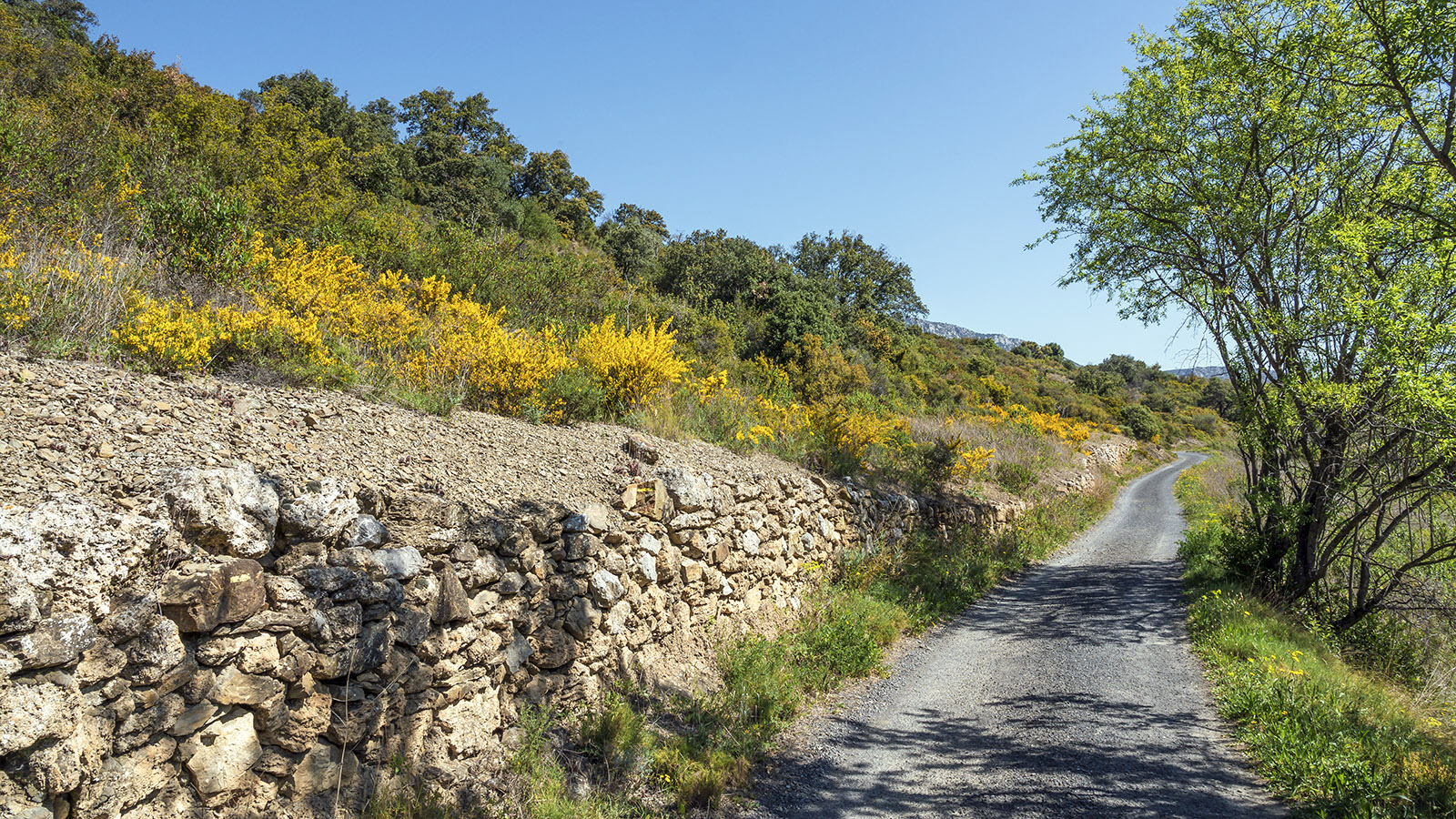 Chemin des Amorioles. Foto: Hilke Maunder