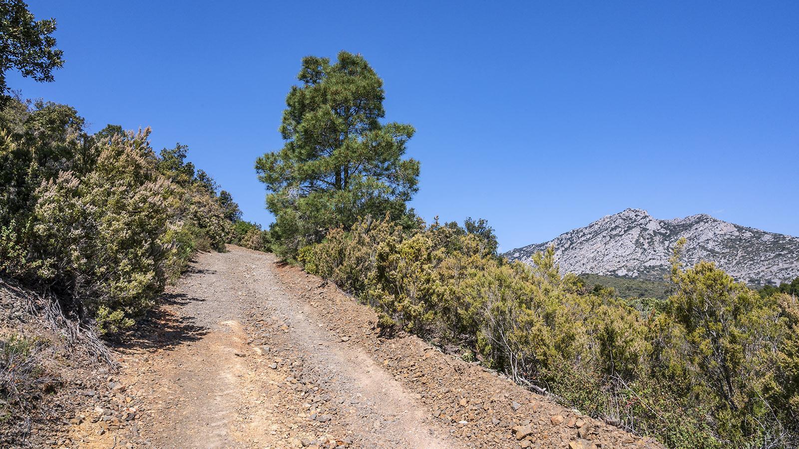 Maury: Chemin des Amorioles. Foto: Hilke Maunder