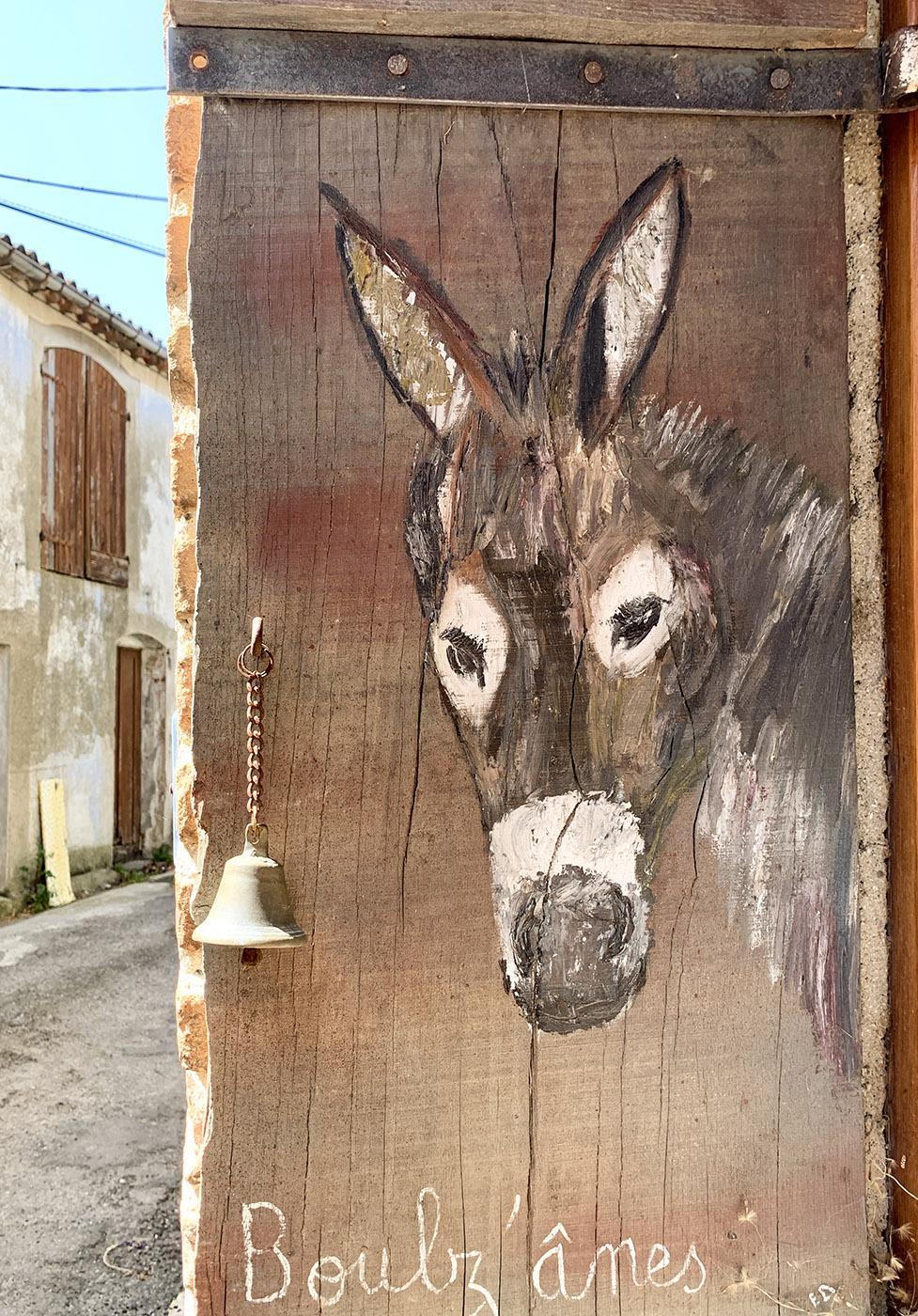 n Prugnanes könnt ihr Esel mieten und mit den Grautieren wandern. Foto: Hilke Maunder