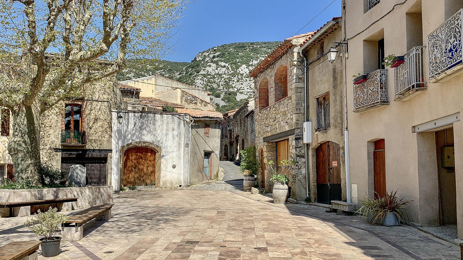 Der Dorfplatz von Pruganes mit seiner alten Platane. Foto: Hilke Maunder