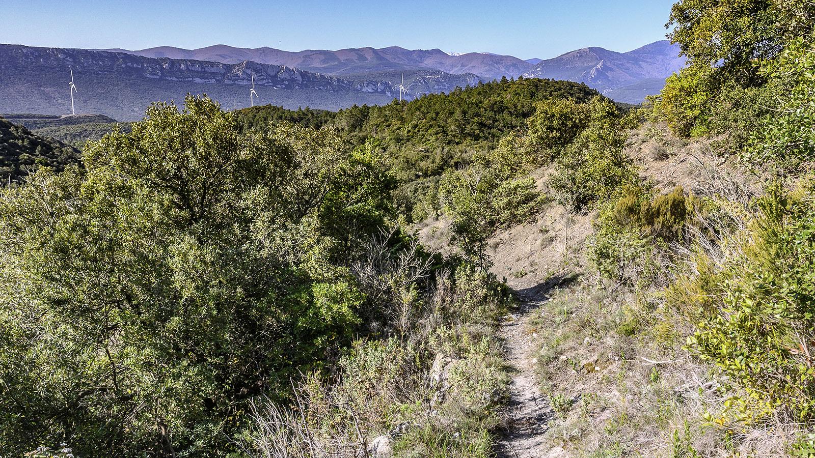 Prugnanes: Der Weg hinauf zum Roc de Nissol. Foto: Hilke Maunder