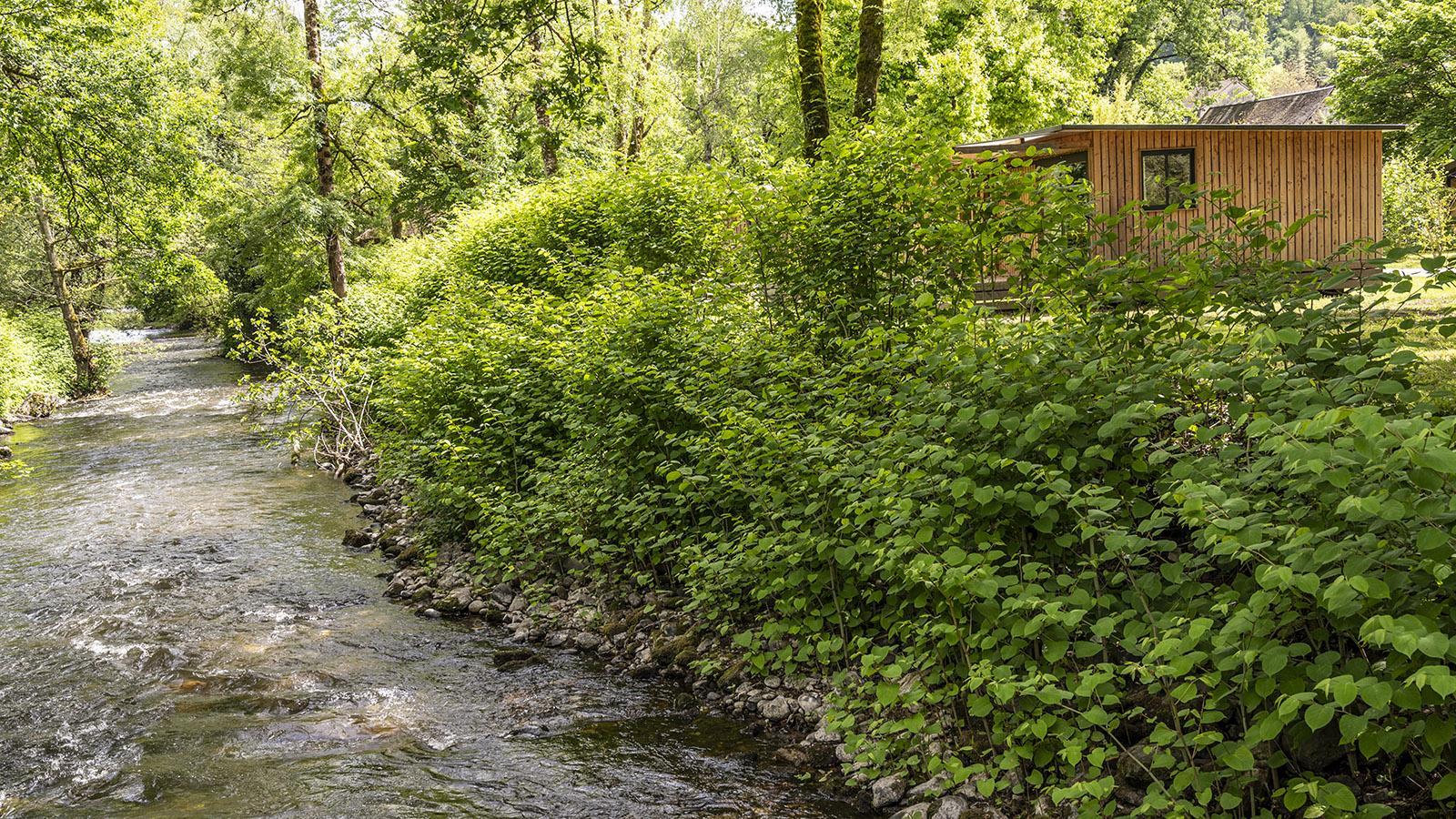 Huttopia Beaulieu: Auch Mobilhome säumen den Canal. Foto: Hilke Maunder