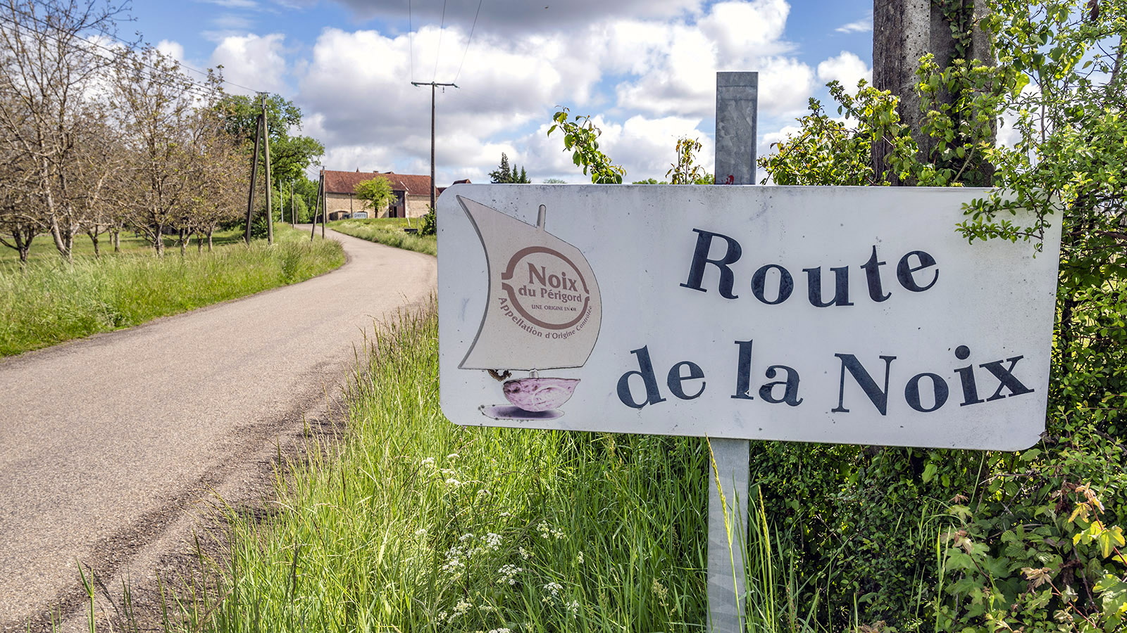 Die Route de la Noix in der Basse Corrèze. Foto: Hilke Maunder
