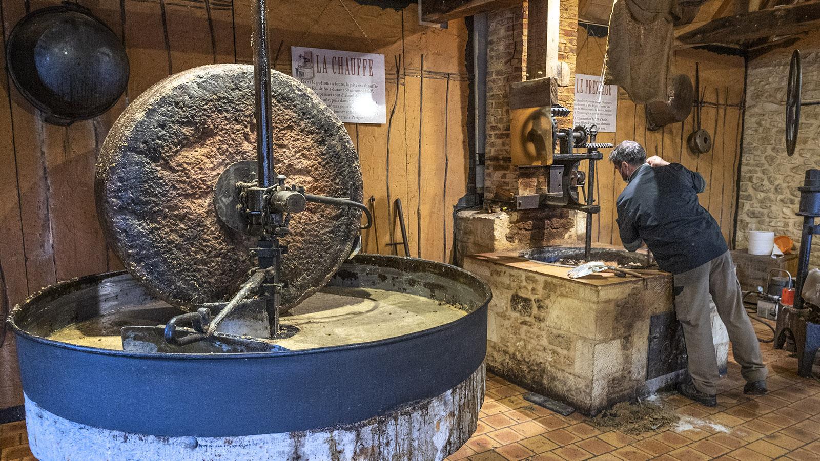Zerkleinern, erhitzen, pressen: die drei Hauptschritte bei der Nussölherstellung. Foto: Hilke Maunder
