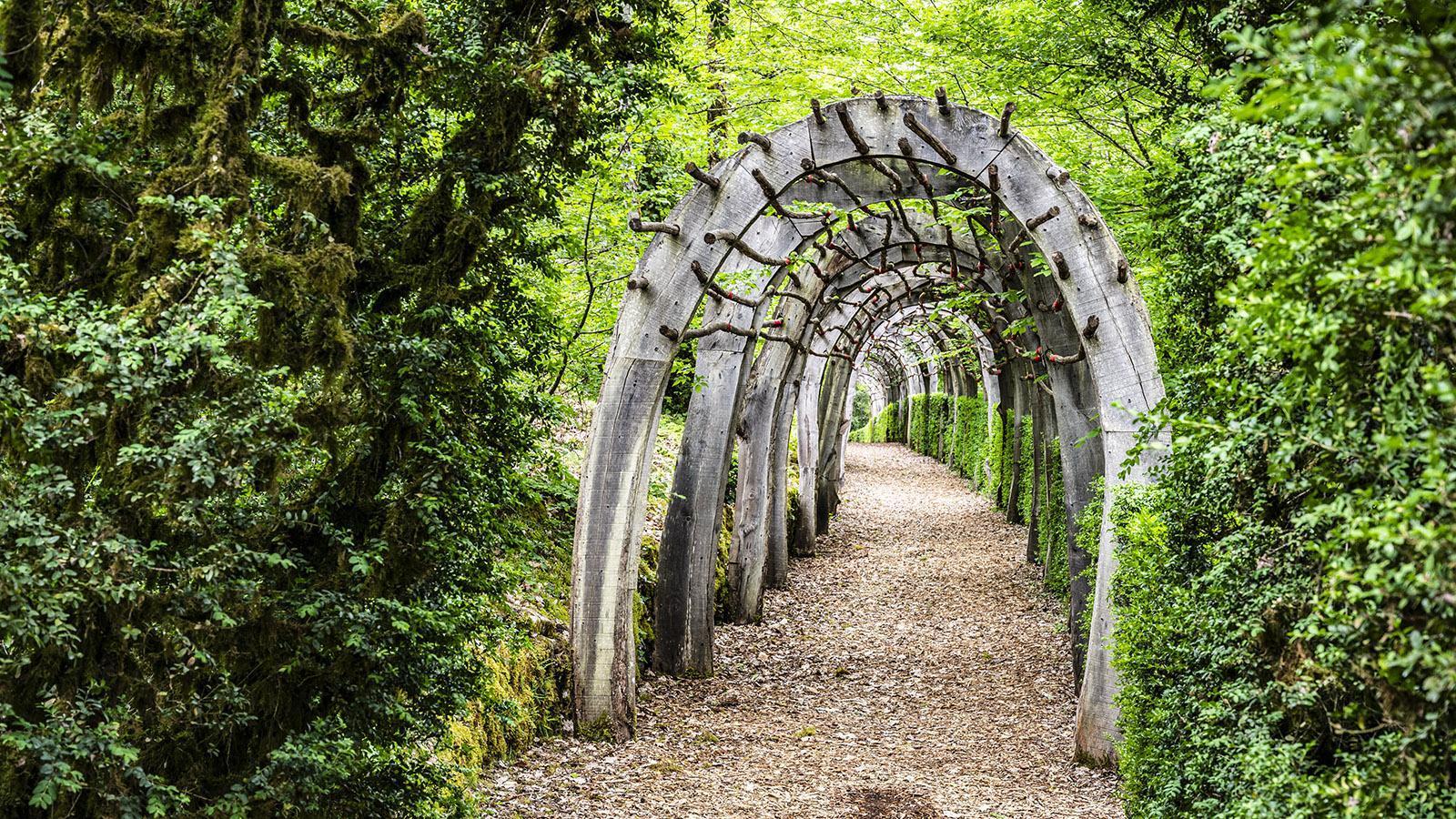 Les Jardins de Marqueyssac. Foto: Hilke Maunder