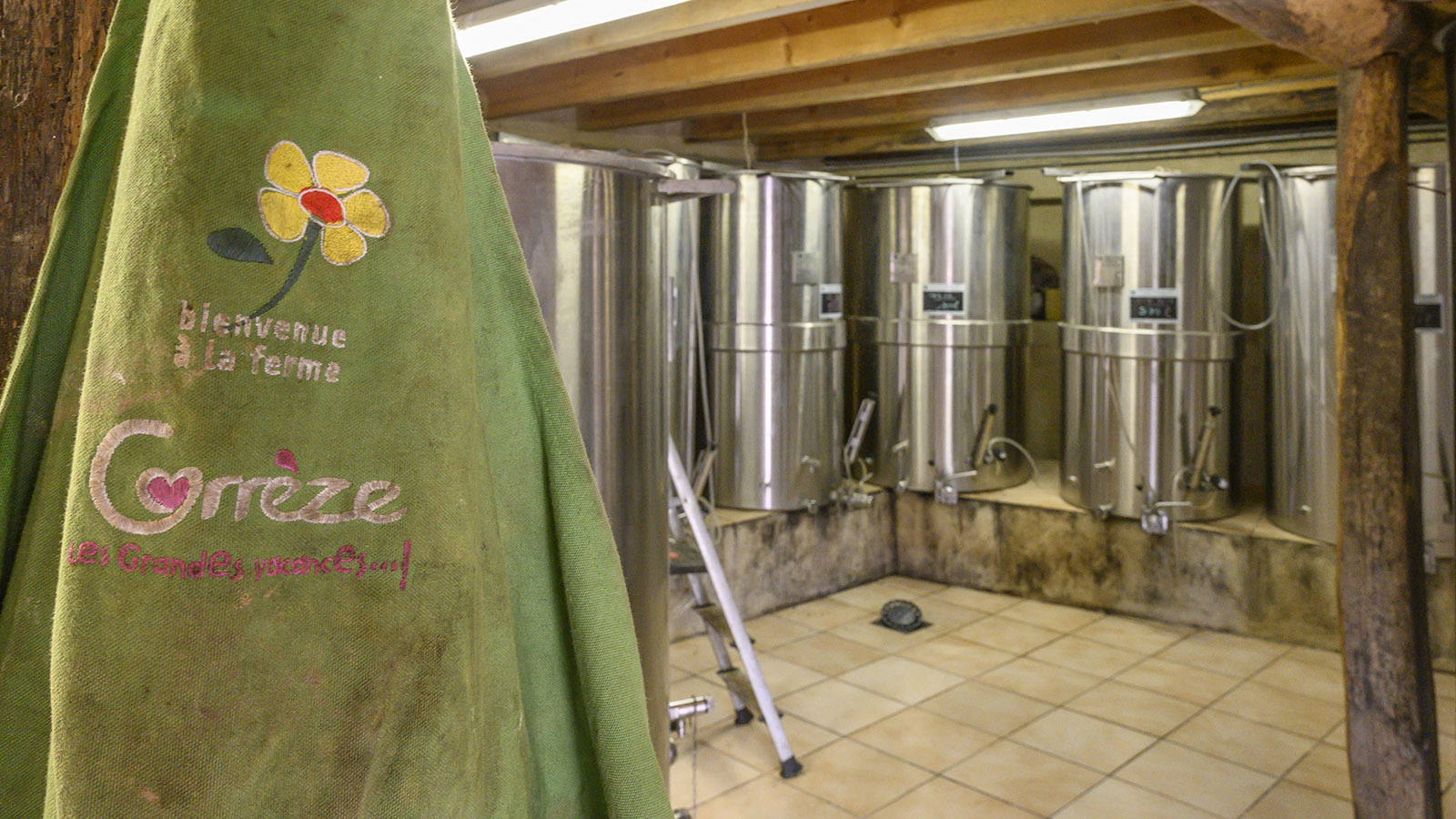 Der Weinkeller von Jean-Louis Roche. Foto: Hilke Maunder