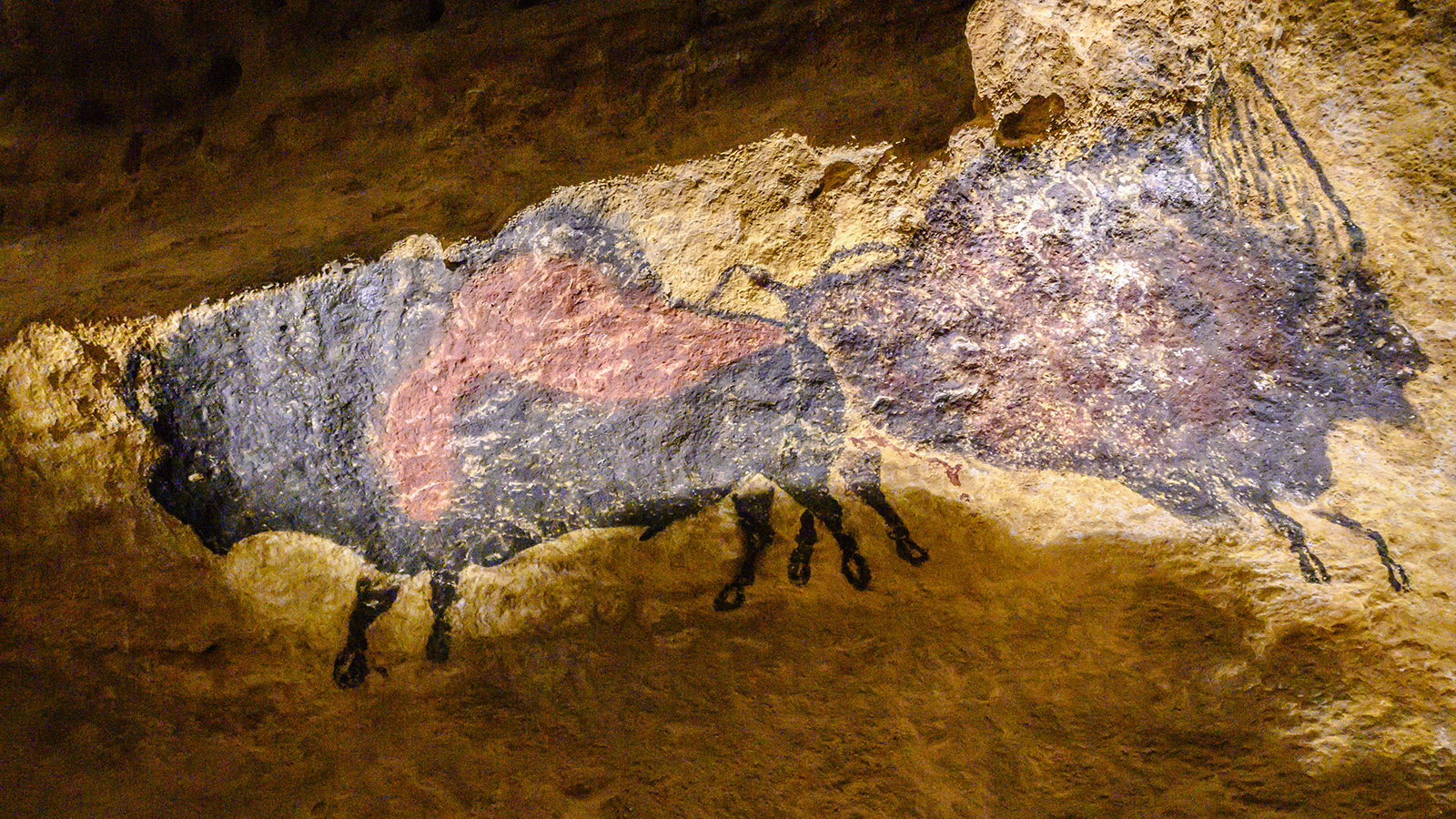 Die Höhle Lascaux IV. Foto: Hilke Maunder
