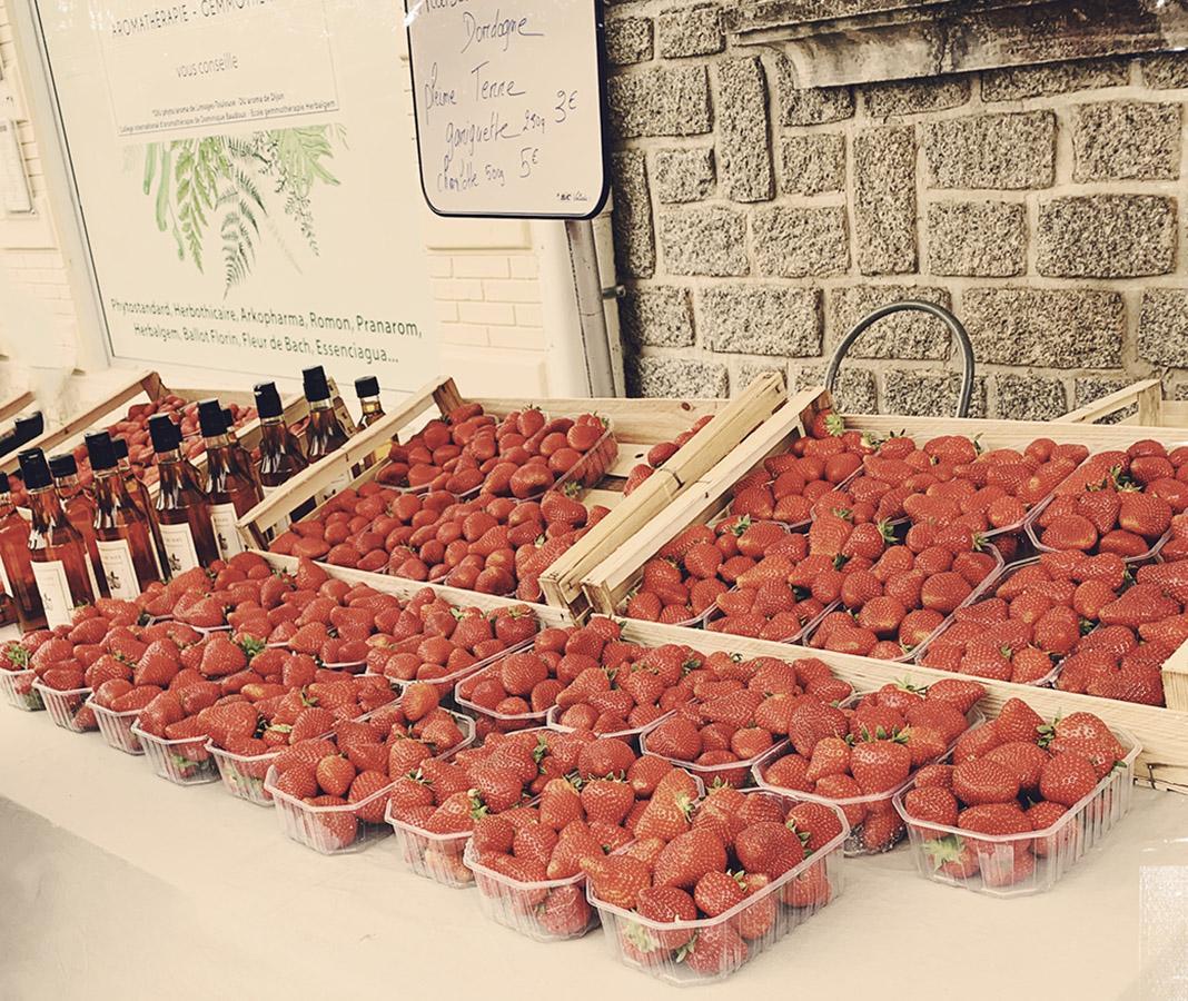 Köstlich: Erdbeeren aus dem Périgord. Foto: Hilke Maunder