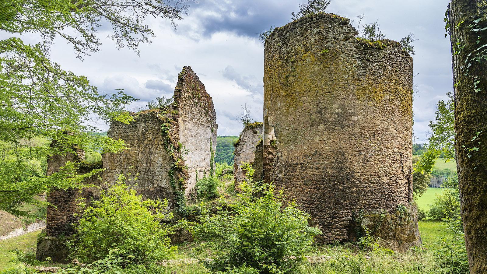 La Madeleine, Burgruine. Foto: Hilke Maunder