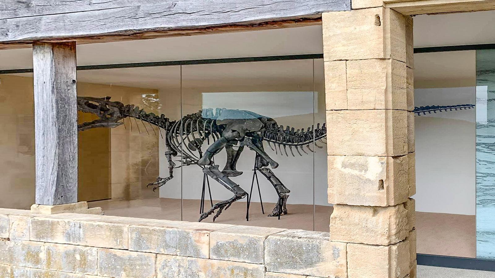 Der Dinosaurier der Gärten von Marqueyssac. Foto: Hilke Maunder