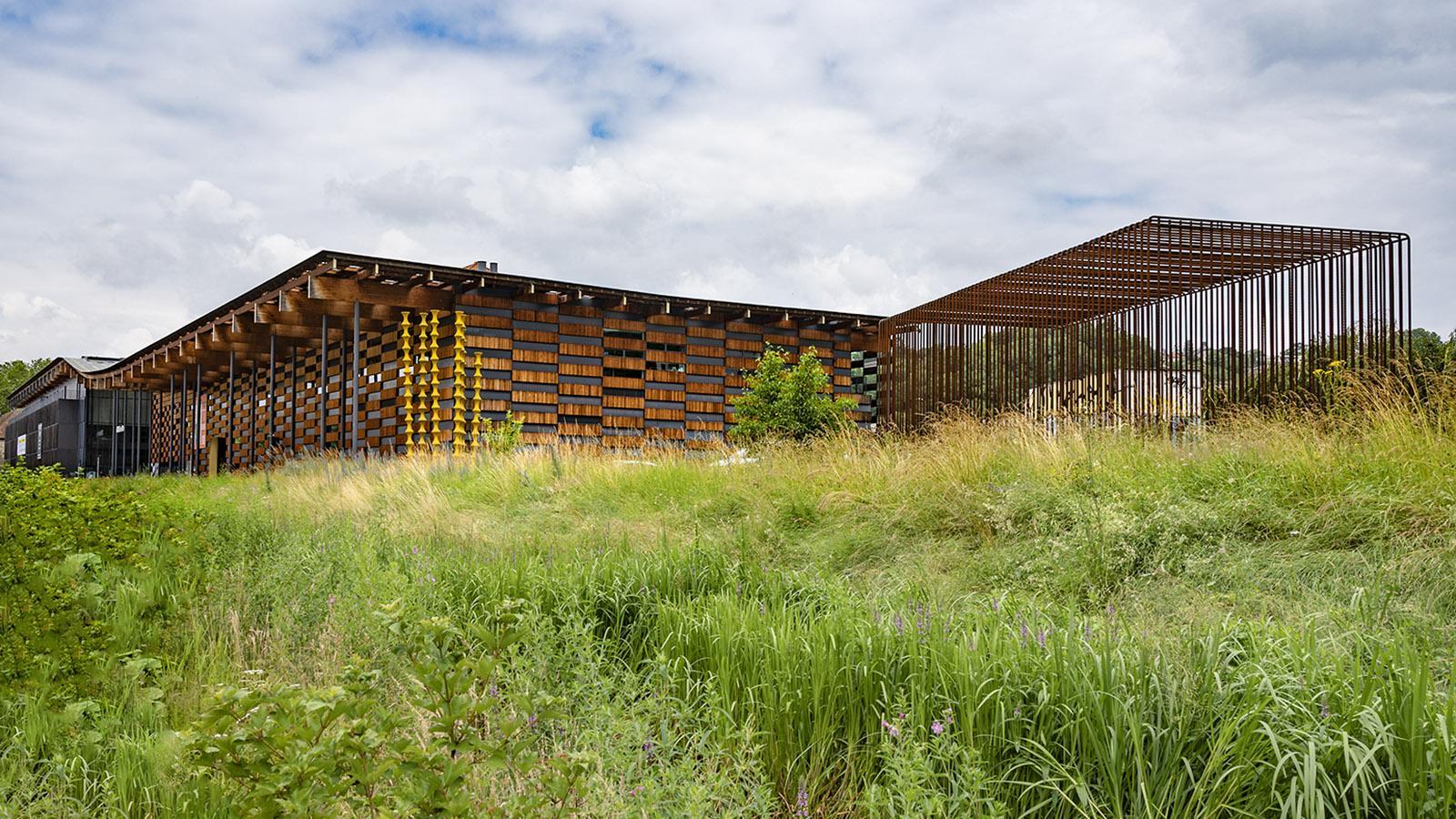 Eingebettet in urbanes Grün: Auch die Landschaftsgestaltung am Bau spiegelt das Bestreben nach Nachhaltigkeit. Foto: Hilke Maunder