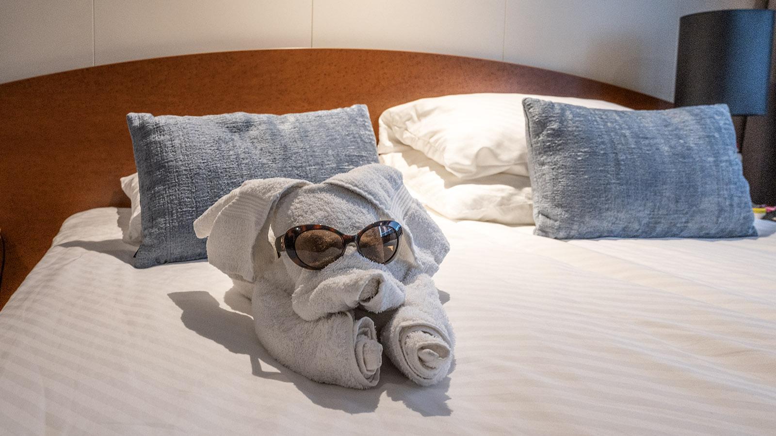 Auch diesen lässigen Hund erhielten wir als Handtuchdeko - schwupps setzte ich ihm die Sonnenbrille auf. Foto: Hilke Maunder