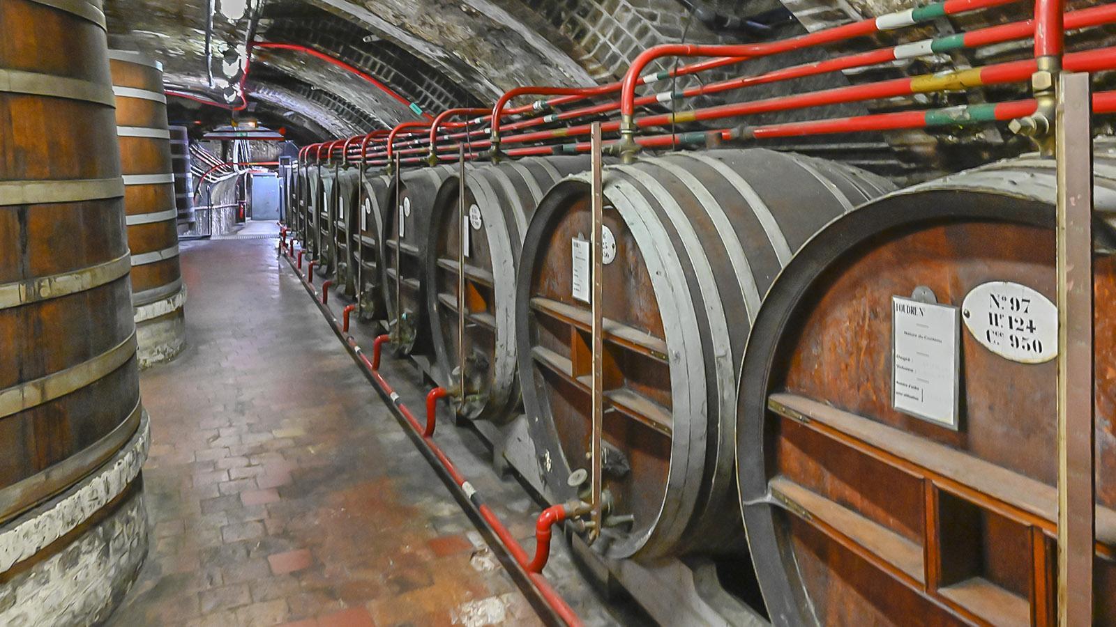 Der Keller. Foto: Hilke Maunder