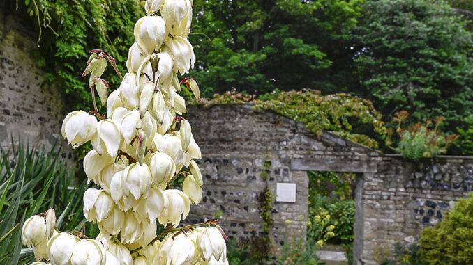 Der erste Garten des Jardin de Silence. Foto: Hilke Maunder