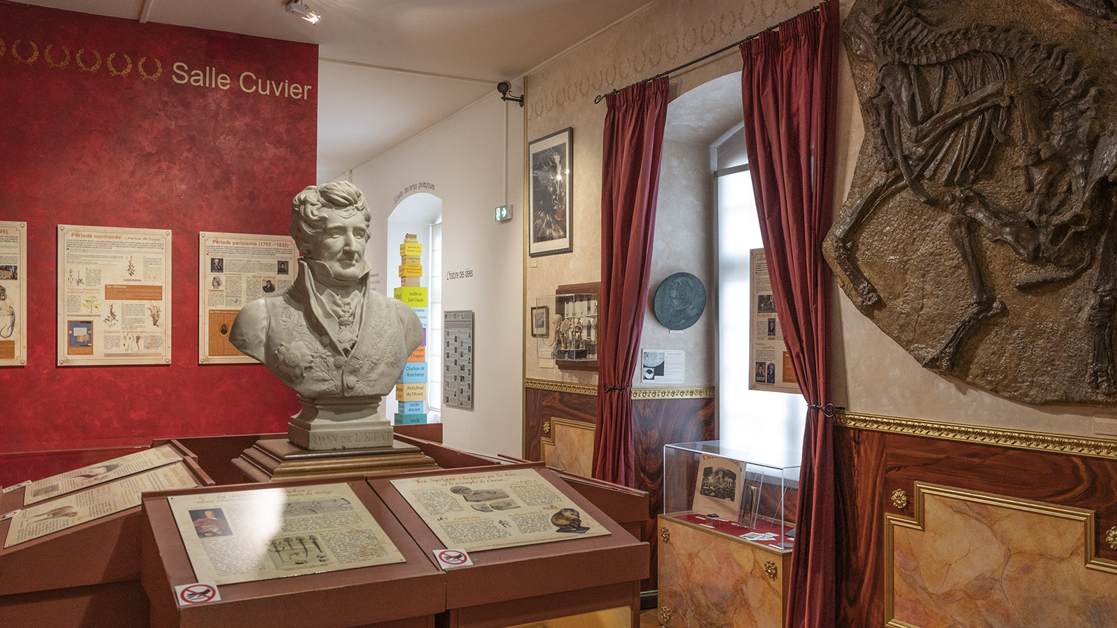 Die Cuvier-Galerie. Foto: Hilke Maunder