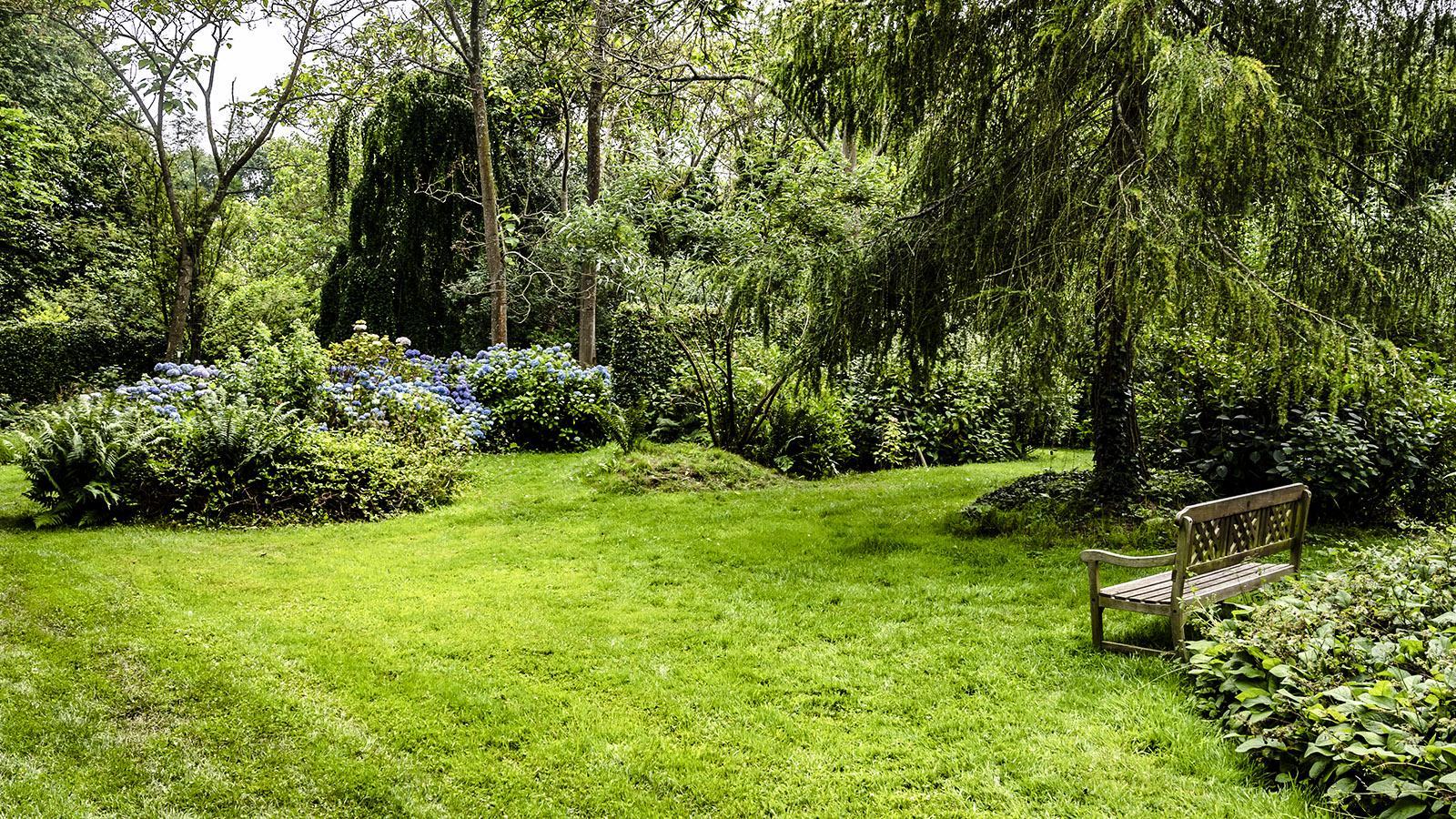 Jardin Shamrock, Varengeville. Foto: Hilke Maunder