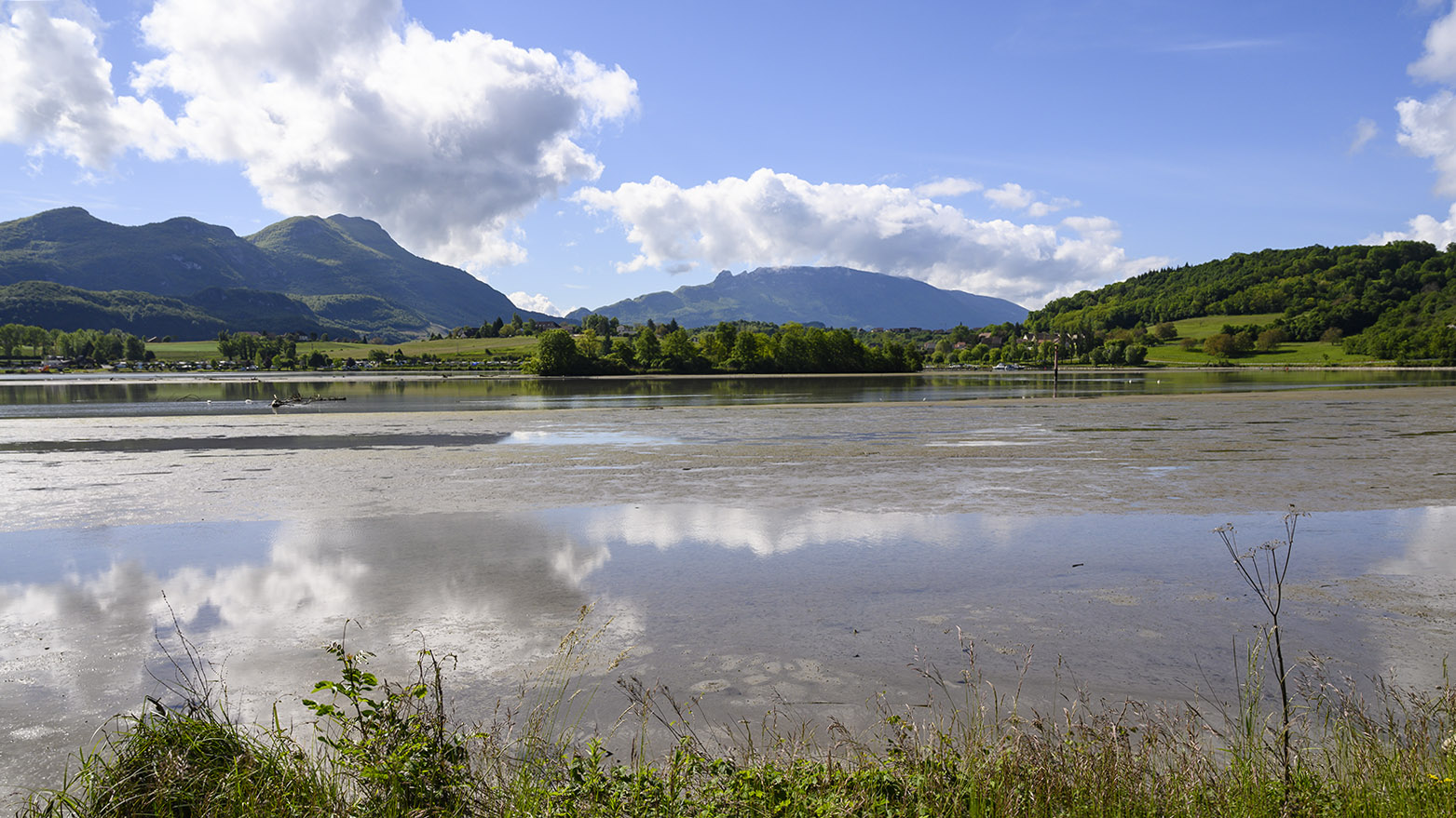Die Rhône bei Lavours. Foto: Hilke Maunder