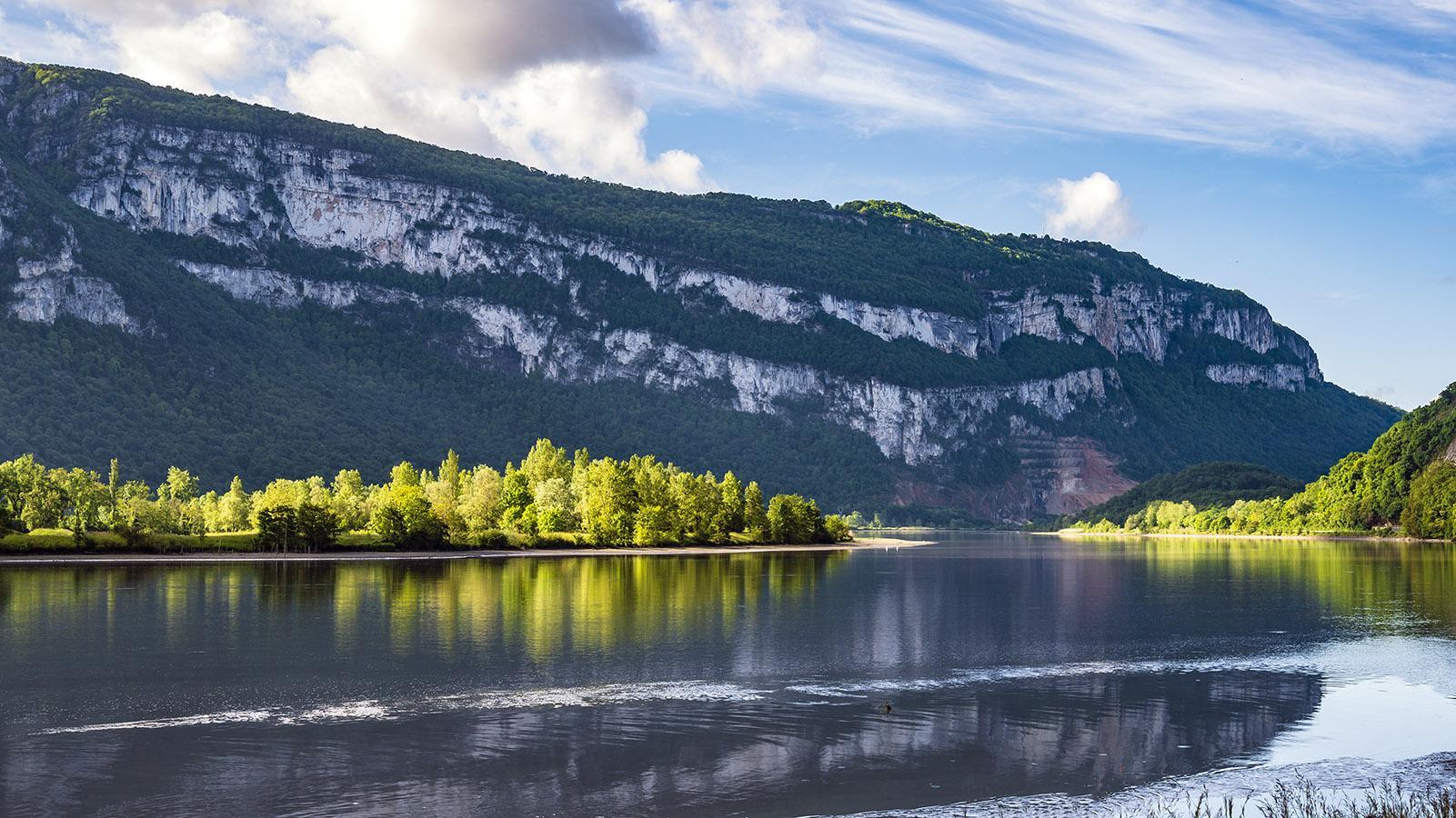 Die Rhône bei Peyrieux. Foto: Hilke Maunder