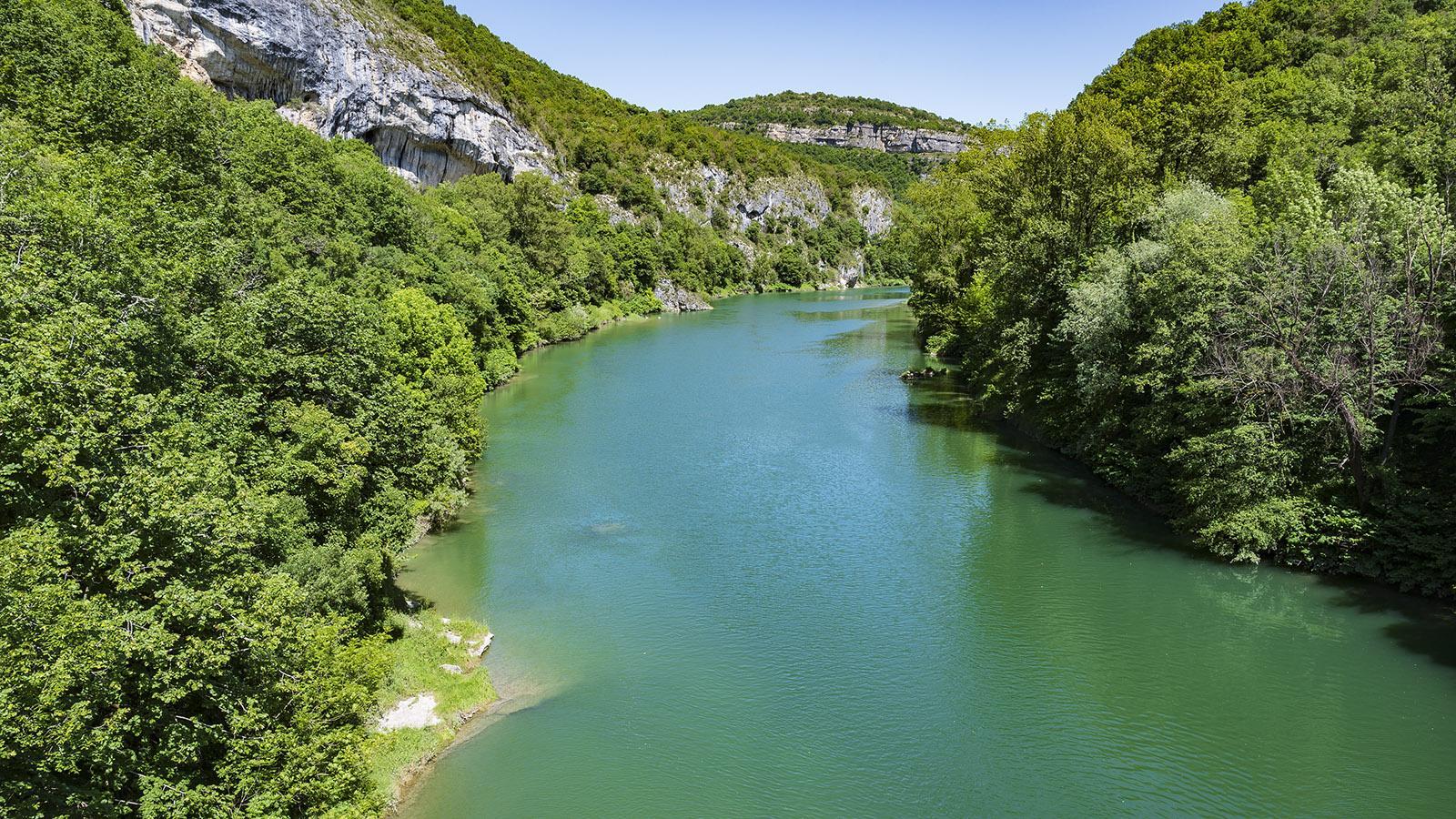 Bei Yenne (Savoie) das die Rhône die Gorges de la Balme geschaffen. Foto: Hilke Maunder