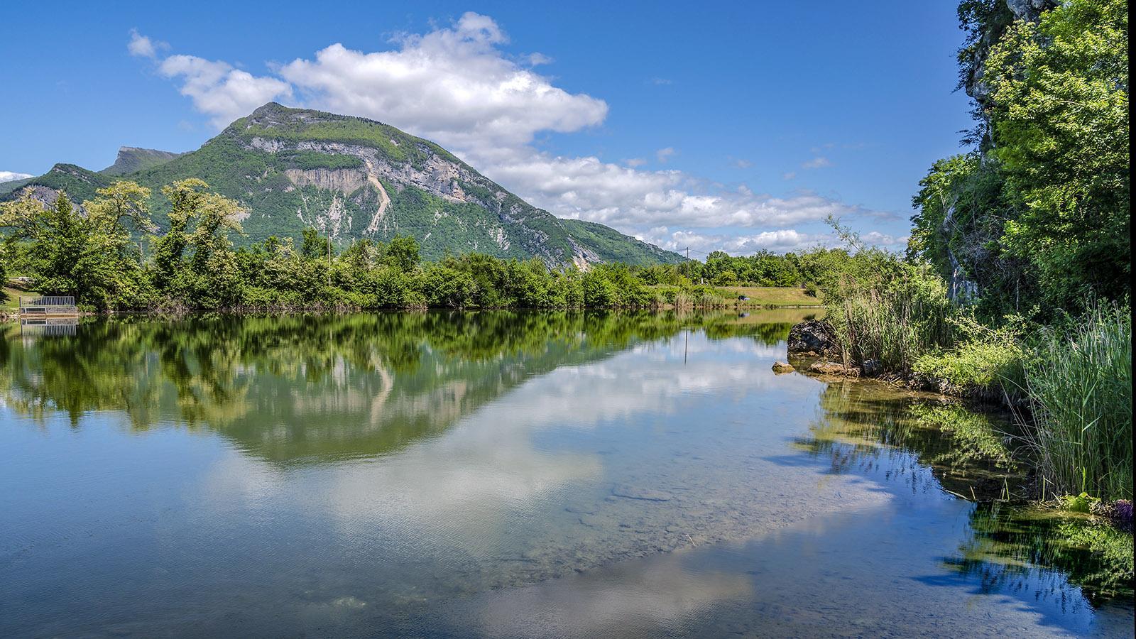 Der <em>étang bleu</em> bei Vions an der Rhône. Foto: Hilke Maunder