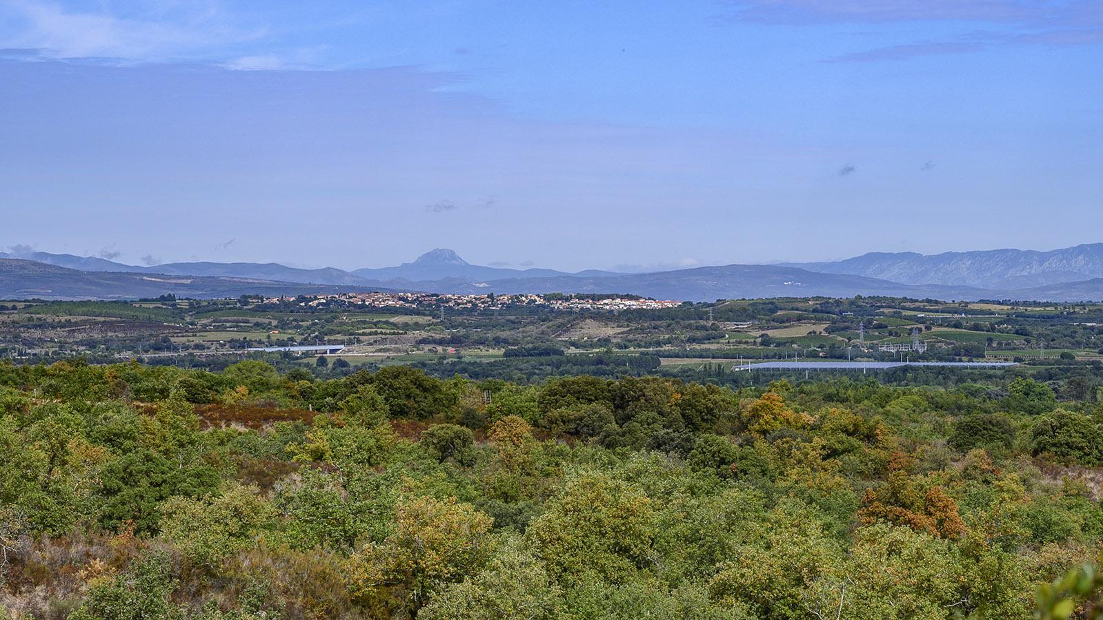 Die Aussicht von den Albères auf die Ebene des Roussillon und die Berge der Corbières mit dem Pech de Bugarach. Foto: Hilke Maunder