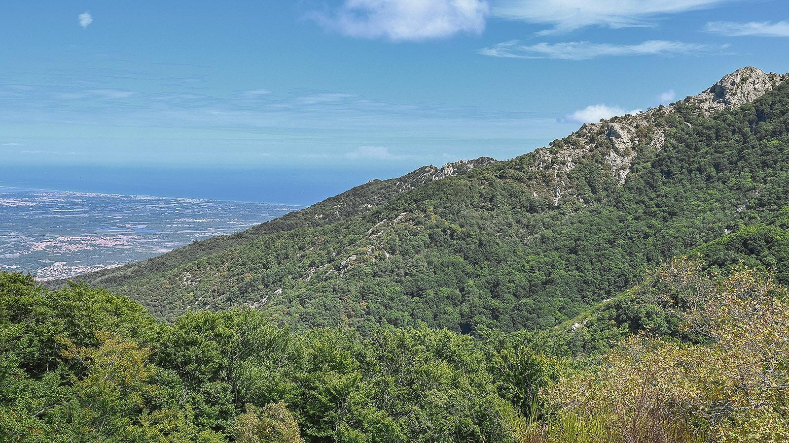 Der Blick vom <em>Col de l'Ouillat</em> auf die Ebene des Roussillon. Foto: Hilke Maunder